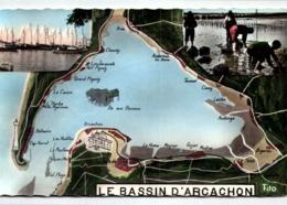 [33] Gironde > Arcachon/ LOT 570 - Arcachon