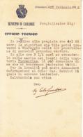 ** MUNICIPIO DI CAMAIORE.- 1912.- (LU).-** - Italia