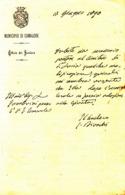 ** MUNICIPIO DI CAMAIORE.- 1890.- (LU).-** - Italy