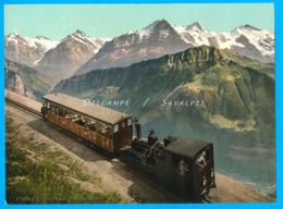 Suisse - Train à Crémaillère Schynige Platte Bahn Vers 1895 - Photochromie P.Z. Photo 16 X 22cm - Photographs