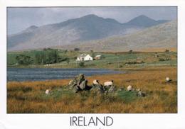 1 AK Irland Ireland * Landschaft In Irland (könnte County Galway Sein - Geht Aus Der Karte Nicht Genau Hervor) * - Galway