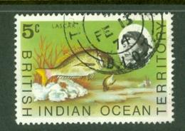 British Indian Territory (BIOT): 1968/70   QE II - Marine Life   SG16    5c   Used - British Indian Ocean Territory (BIOT)