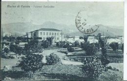 ITALIE - CARRARA - Marina Di CARRARA - Palazzo Scolastico - Carrara