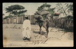 C2112 SENEGAL - DAKAR UN CHAMELIER CIRCULÉE SANS TIMBRE - Senegal