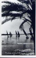 Flukas On The Nile - Formato Piccolo Viaggiata Mancante Di Affrancatura – E 13 - Cartoline