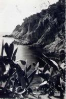 Hotel Aigua Blava - Fornells - Bagur - Costa Brava - Contraluz - Formato Piccolo Viaggiata – E 13 - Cartoline