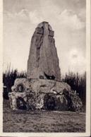 Le Bois Des Caures - Le Monument Du Colonel Driant Et De Ses Chasseurs - Formato Piccolo Non Viaggiata – E 13 - Cartoline