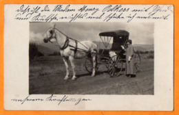 WILBUR  -  OREGON  -   BEL  ATELLAGE - ( Wilbur  Oregon 97470  États-Unis ) - Correspondant  Mr. STECK  SCHILTIGHEIM - Etats-Unis