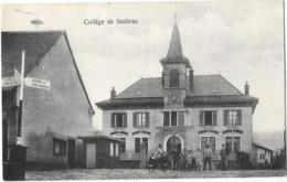 SAUBRAZ (Suisse) Collège Animation - VD Waadt
