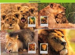Nfd16mb FAUNA WILDE KAT ROOFKAT LEEUW LION WILD CAT KATZEN GROßKATZEN FELINS TOGO 2012 MAX - Raubkatzen