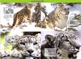 Nfd17mb FAUNA WILDE KAT ROOFKAT SNEEUWLUIPAARD SNOW LEOPARD WILD CAT KATZEN FELINS SOLOMON ISLANDS 2012 MAX - Big Cats (cats Of Prey)