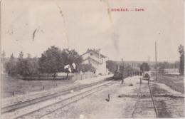 Bv - Cpa DONNIEUX (Haute Marne) - Gare - Frankreich