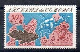 COMORES - YT N° 104 - Neuf ** - MNH - Cote: 10,00 € - Comores (1950-1975)