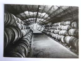 CPM (44) Loire Atlantique - MACHECOUL - Distillerie SEGUIN Et Cie - Le Grand Chai De Vieillissement - Machecoul