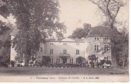 L100E_03 - Thoissey - 5 Château De Challes - Autres Communes