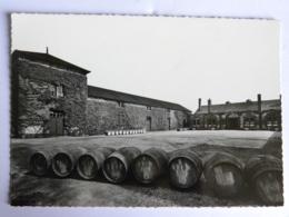 CPSM (44) Loire Atlantique - MACHECOUL - Distillerie SEGUIN Et Cie - Vue De La Cour D'Honneur - Machecoul