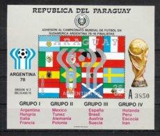 Paraguay 1978**, Block Fußball-WM Argentinien, Kaktus / Paraguay 1978, MNH, S/S Soccer World Championship Argentina - Sukkulenten