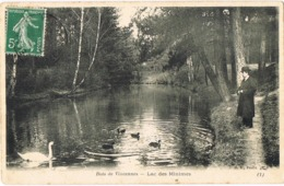 34009. Postal PARIS. Bois De Vicennes 1909, Circulada A Tours - Francia