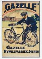 Postal Stationery China 2006 Bicycle - Gazelle Bicycle Factory - Vélo