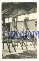 Armée Belge. Para-Commandos. Ground Training. Entraînement. 1961. Et. Marteau. Photo Véritable - Militaria