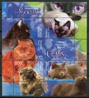 Belarus 2004 Bielorrusia / Cats MNH Gatos Katzen Chats / Cu7434  18-25 - Gatos Domésticos