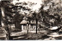 LA BAULE (44) : Parc Des Druides - La Baule-Escoublac