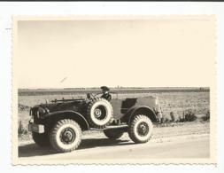 Photographie Guerre D'algérie  Jeep Chasseur Alpin    Défilé Photo 9x12 Cm Env - Cars