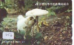 MUSHROOM CHAMPIGNON SETA Fungo Paddestoel (256) - Fiori