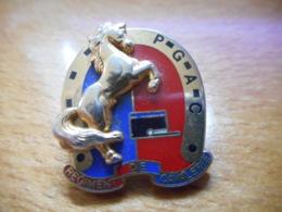 A046 -- Pin's Arthus Bertrand PGAC Regiment De Cavalerie - Arthus Bertrand