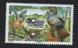 W14 Nouvelle-Calédonie °° 2015 1248 Ornithologie Oiseaux - Nuevos