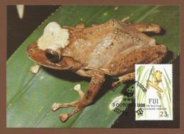 Ozeanien Fiji 1988 Mi.Nr. 587 , Fiji Tree Frog - WWF Official Maximum Card - SUVA . FIJI 3 October 1988 - Fiji (1970-...)