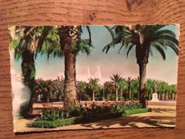 CPSM, Casablanca Le Parc Lyautey, éditions La Cigogne, écrite - Casablanca