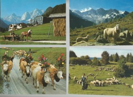 Lot De 30 Cartes Postales Modernes Agriculture   ( Europe ) - Agricultura