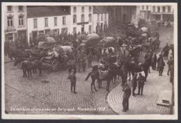 CPA -  Belgique, SOIGNIES, La Retraite Allemande En Belgigue, Novembre 1918, Carte Photo - Soignies