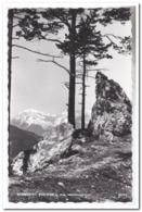 Semmering, Rax, 2009m Vom Wolfsbergkogel - Semmering