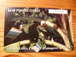 Phonecard Bahamas - Bird - Bahamas