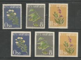ALBANIA - MNH - Plants - Flowers - Perf. + Imperf. - Flora