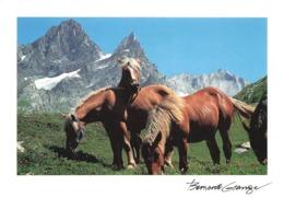 Lot De 740 Cartes Postales De France (pas De Multivues), Cartes Scannées Incluses - Postcards