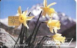 CARTE-PUCE-ANDORRE-100U-AND26-GEMB-06/95-NARCISSES JAUNES-Reste 82U-TBE - Andorra