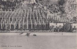 SALò-BRESCIA-LAGO DI GARDA-CEDRAIE-CARTOLINA NON VIAGGIATA -ANNO 1910-1920 - Brescia