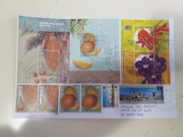 Enveloppe Argentine Distribuée Avec Timbres De Chien Et Autres - Argentina
