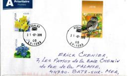LATVIA, Letter, Owl And Flowers   /   LETTONIE, Enveloppe, Hibou Et Fleurs    2016 - Eulenvögel