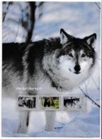NORWAY 2008 Wild Animals/Elk/Bear/Wolf: Collectors' Sheet UM/MNH - Norvegia