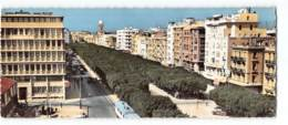 Tunisie - Tunis Avennue Habib Bourguiba   Edit Gaston Levy 561 Carte Panoramique 9X22 CPSM Station Service Shell - Tunisie