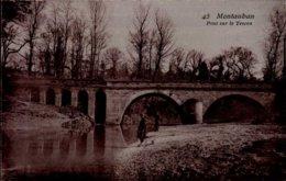 82-MONTAUBAN..PONT SUR LE TESCOU...CPA - Montauban