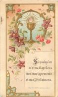 IMAGE PIEUSE CANIVET AVEC PUBLICITE AU VERSO  TRICALCINE VOIR LES DEUX SCANS - Imágenes Religiosas