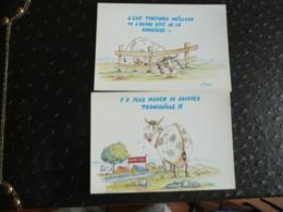 RÉFLEXIONS DE VACHES (lot De 2 Cartes) - Humour