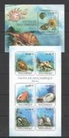 S1068 2011 MOZAMBIQUE MOCAMBIQUE FAUNA MARINE LIFE BUZIOS SEASHELLS KB+BL MNH - Coneshells