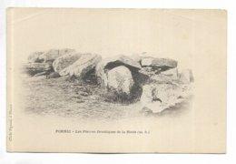 44 - PORNIC - Les Pierres Druidiques De La Motte. Carte Précurseur - Pornic