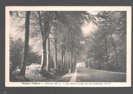 Baraque Fraiture - Les Belles Routes De Nos Ardennes - Vielsalm